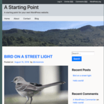 A Starting Point WordPress Theme