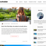 Aari WordPress Theme