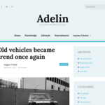 Adelin Wordpress Theme