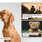 Adri Wordpress Theme