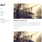 Alternate Lite Wordpress Theme