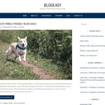 Blogeasy Wordpress Theme