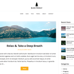 BlogFeedly Wordpress Theme