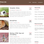 BunnyPressLite WordPress Theme