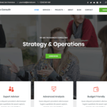 Business Consultr Wordpress Theme