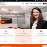 Business Kid Wordpress Theme