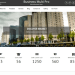 Business Multi Lite Wordpress Theme