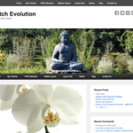 Catch Evolution Wordpress Theme