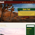 Chandi Wordpress Theme