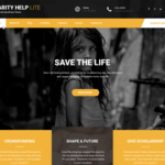 Charity Help Lite Wordpress Theme