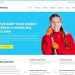 Cleaning Lite Wordpress Theme