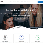 Codify WordPress Theme
