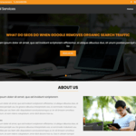 Digital Services WordPress Theme