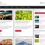Donovan Wordpress Theme