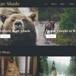 Drape Shade Wordpress Theme