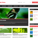 Dynamic News Lite Wordpress Theme