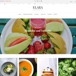 Elara Wordpress Theme