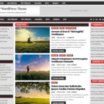 ElegantWP Wordpress Theme