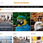 Everest News Lite Wordpress Theme