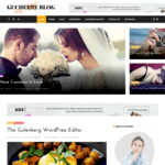 GuCherry Lite Wordpress Theme