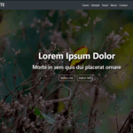 Gute Wordpress Theme