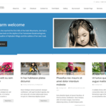 i-transform Wordpress Theme
