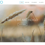 Indigo Lite Wordpress Theme