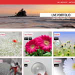 Live Portfolio Wordpress Theme