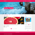 Mateo WordPress Theme