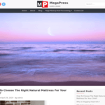 Megapress WordPress Theme
