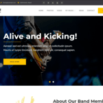 Musical Vibe Wordpress Theme