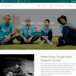 NGO Charity Lite Wordpress Theme