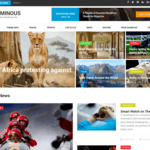 Numinous WordPress Theme