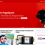 Page Speed Wordpress Theme