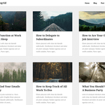 Plain Blogrid Wordpress Theme