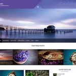 Plum Wordpress Theme