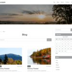 Raccoon WordPress Theme