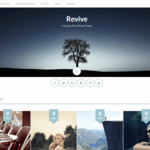 Revive Wordpress Theme