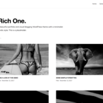 RichOne Wordpress Theme