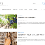 Ritz WordPress Theme