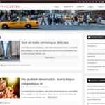 Salinger Wordpress Theme