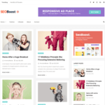Seoboost Wordpress Theme