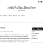 Serdika Wordpress Theme