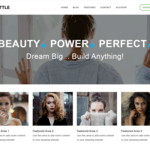 Shuttle Business Wordpress Theme