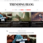 Trending Blog Wordpress Theme