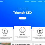Triumph Seo Wordpress Theme