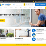 VW Cleaning Company Wordpress Theme