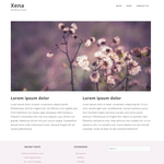 Xena WordPress Theme
